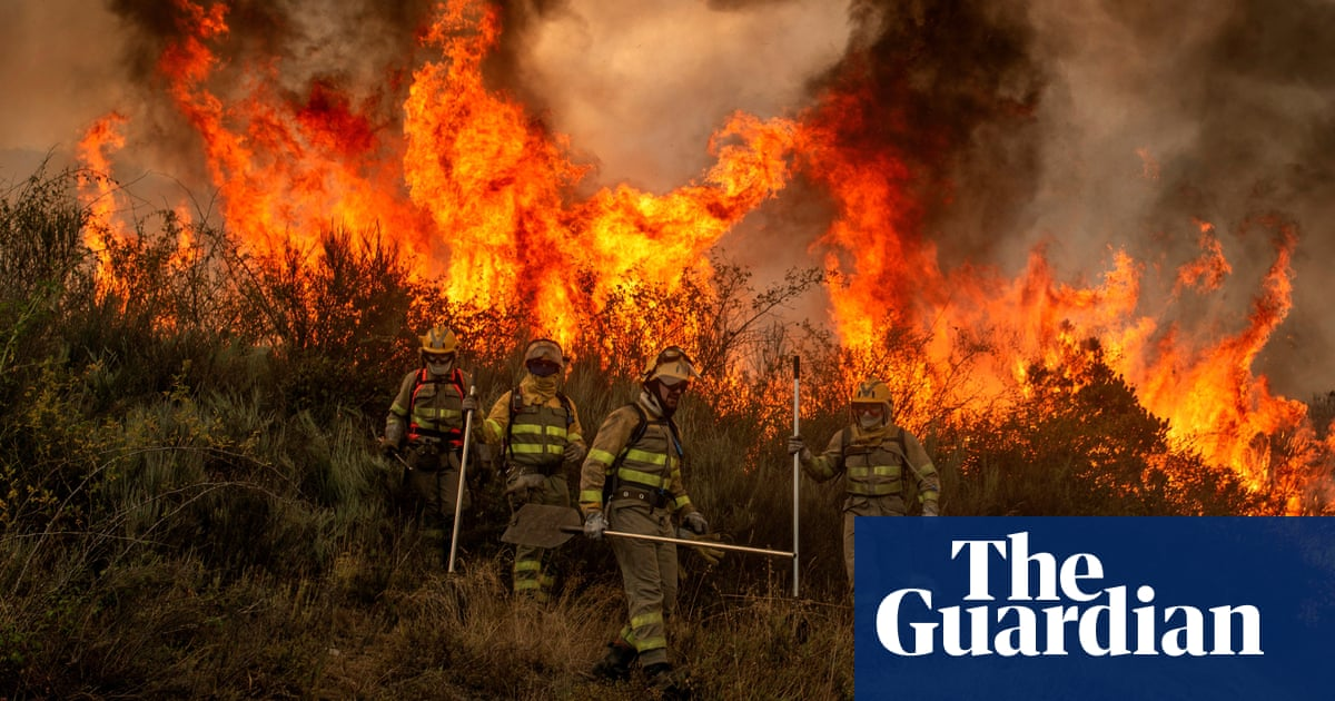 Summer of fire: blazes burn across Mediterranean with more extreme weather forecast