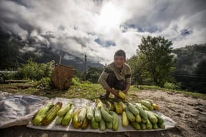 Young farmer selling produce