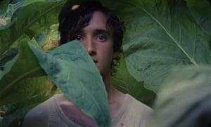 Lazzaro Felice or Happy as Lazzaro by Alice Rohrwacher.