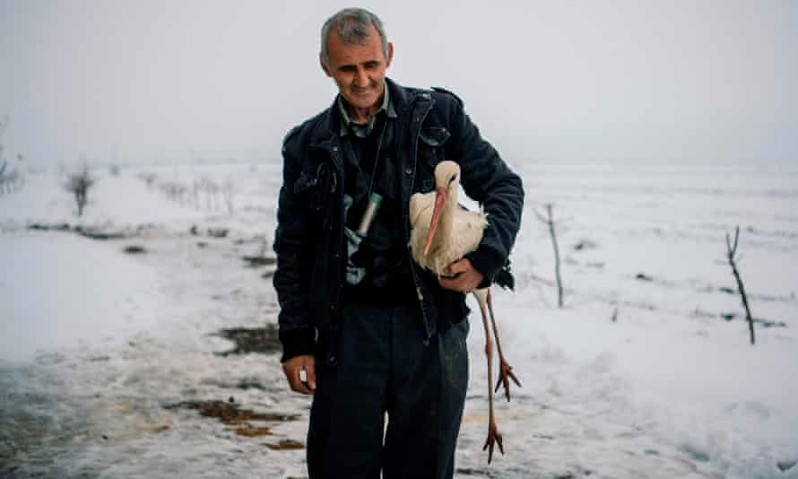 Safet Halil holds a stork in his farm backyard