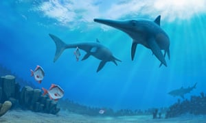 Ichthyosaurs are marine reptiles that disappeared from Earth's oceans at the end of the Mesozoic. They are among the fossilised animals found in Grand Staircase-Escalante National Monument.