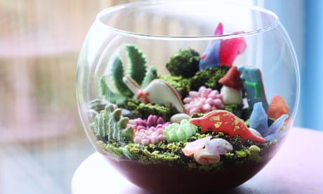 Kim-Joy's recipe for vegan chocolate cake and mousse terrarium