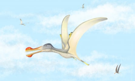 The fish-eating pterosaurs had wingspans of three to four metres.