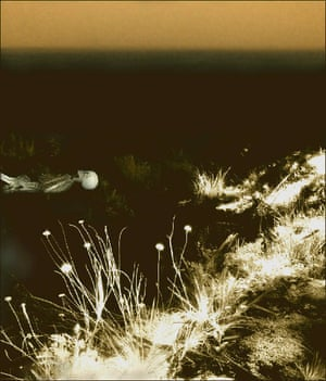 Eva Youren's Millais' Ophelia Updated 3 (photograph)
