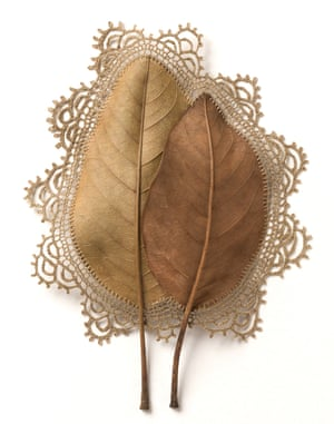 Everything That Surrounds Us, a leaf sculpture by Susanna Bauer