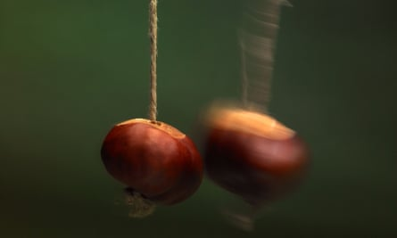 Conkers at battle