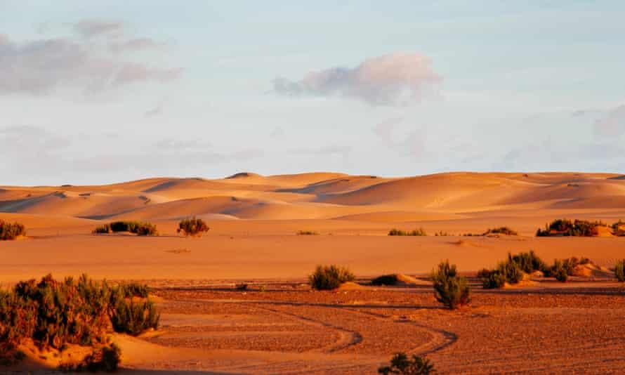 Sand dunes in Sahara desert, Western Sahara.