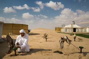 Nature, stories winner. A falcon hunting camp in the desert outside Abu Dhabi