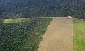 The area around Altamira suffers deforestation associated with logging and the Belo Monte hydroelectric dam.