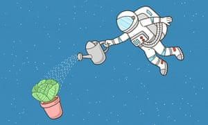 'It requires a lot of astronaut time to add water': the challenges of gardening in space.