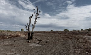 A drought-affected NSW town