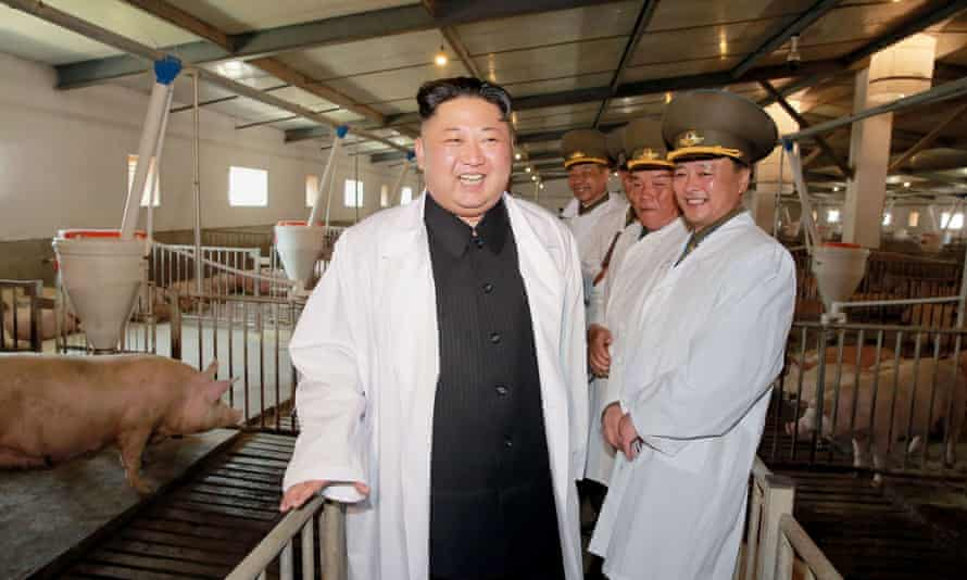 This undated picture released by North Korea's official Korean Central News Agency shows North Korean leader Kim Jong-Un visiting a pig farm at Taechon Air Base of the Korean People's Army.