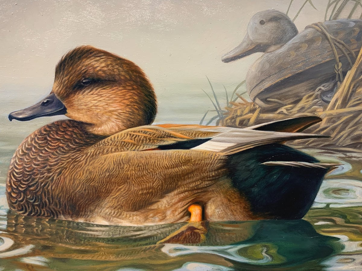 It Should Be About The Duck Ire As New Us Nature Stamps Feature Hunting Gear Wildlife The Guardian