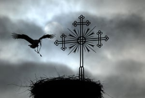Stork and nest church roof