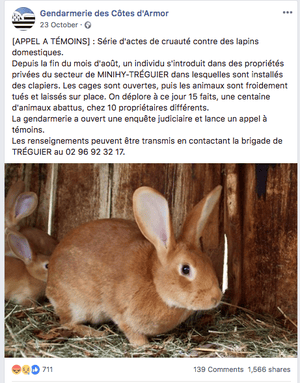 A Facebook appeal by the local gendarmerie for witnesses to the rabbit killings.