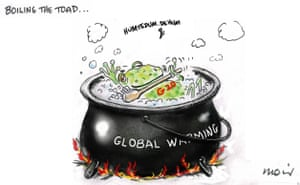 Boiling the Toad by Alan Moir