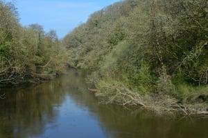 The Afon Teifi at Cilgerran.