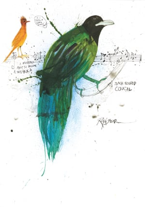 A Woodlark About to Become a Skylark and A Black-Hooded Coucal by Ralph Steadman