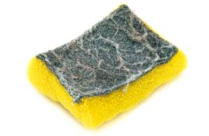 A kitchen sponge