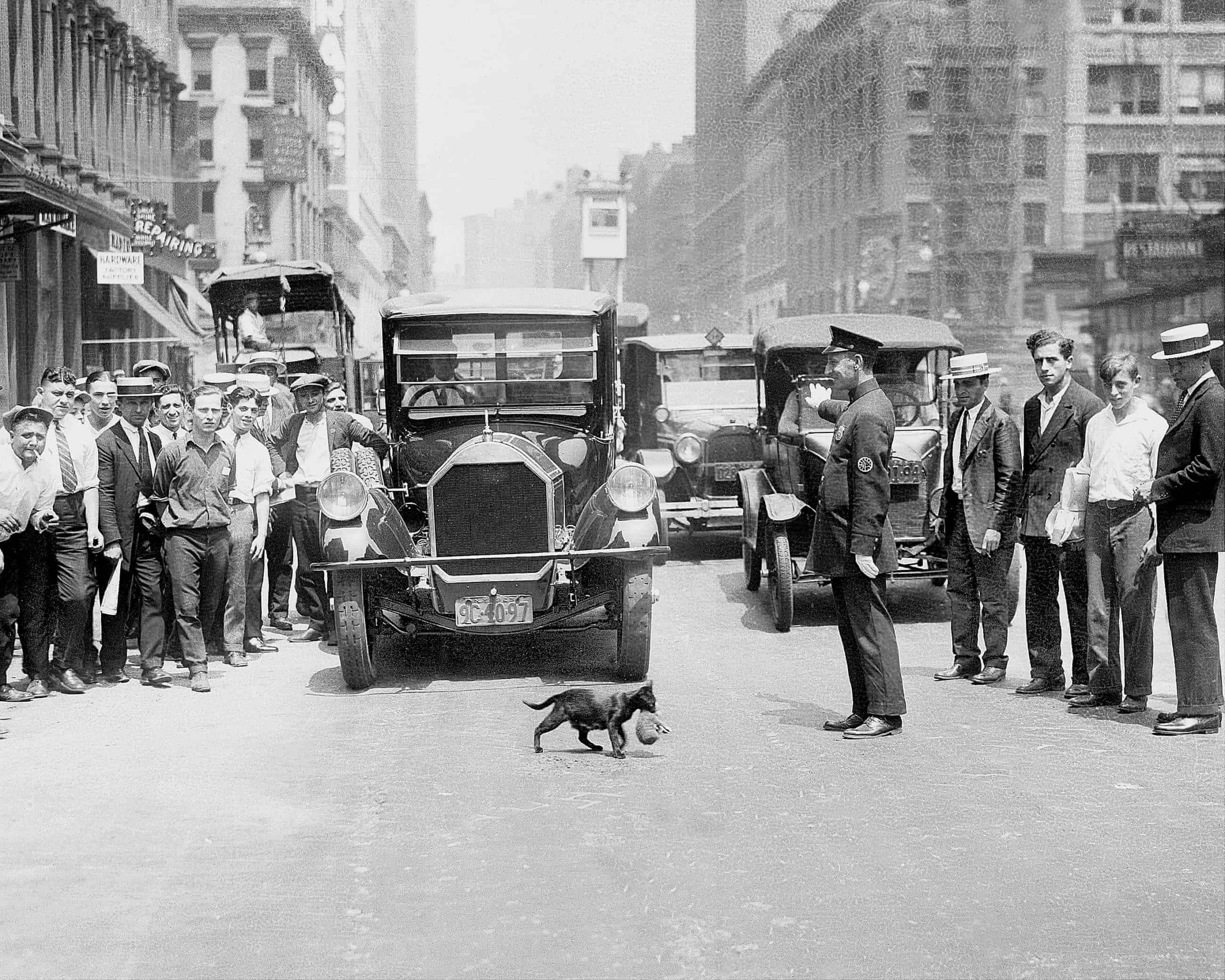 Cat Men at the Turn of the Century