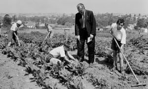 Young forced British migrants work in a garden at a home in Melrose House, near Parramatta, New South Wales, in 1953.