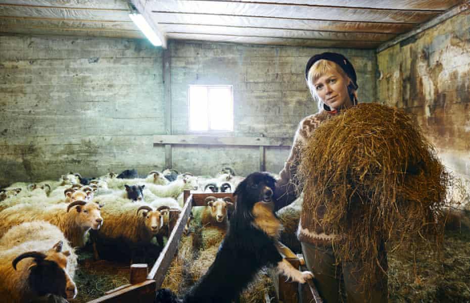 Heida Gudný Ásgeirsdóttir with Kolka the border collie and sheep