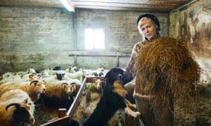 Heiða Guðný Ásgeirsdóttir photographed on her farm in Iceland with her border collie Kolka
