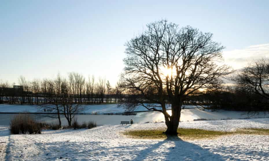 Winter sun setting behind tree in snow covered field at Mugdock country park