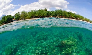 Coral island: Pemuteran beach in Bali, Indonesia, with healthy protective coral growing close to land.