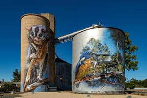 Jimmy DVate also painted these colourful GrainCorp silos in Rochester in Victoria, again showing his respect for threatened native wildlife. On the banks of the Campaspe River, the piece features a wrist-winged glider alongside an azure kingfisher.