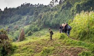 Tourists in Bwindi national park, Uganda.