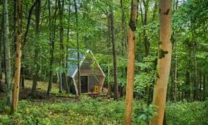The woodland setting.