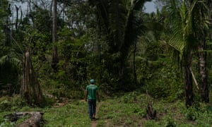 The Uru-Eu-Wau-Wau reserve in Rondônia state, Brazil. Indigenous activists say they are convinced attacks on their communities have intensified since Jair Bolsonaro became president.