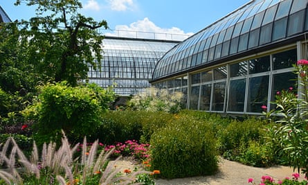 Garfield Park Conservatory.