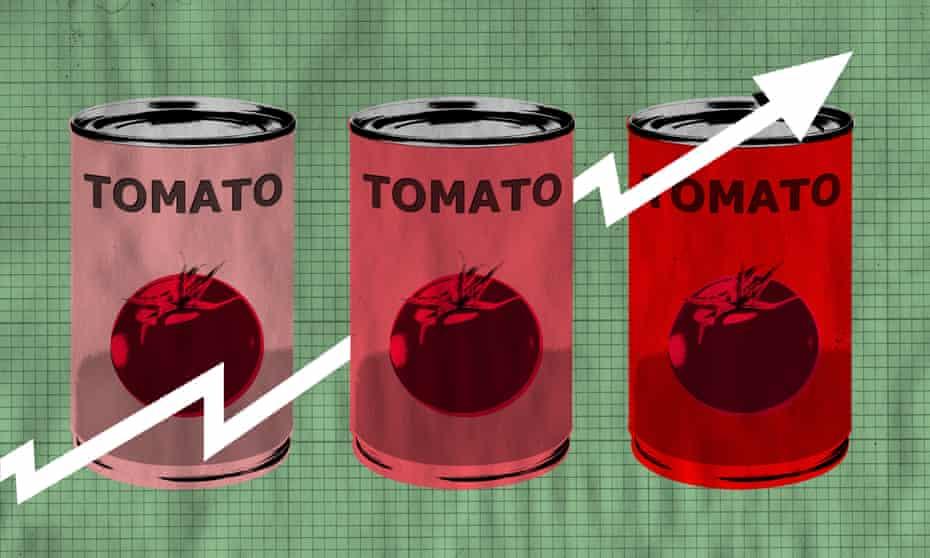 tinned tomato graphic