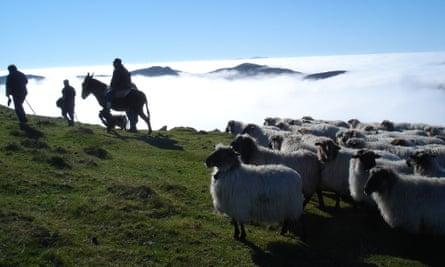 Pyrenees to Basque Country Kabi Basque Experience
