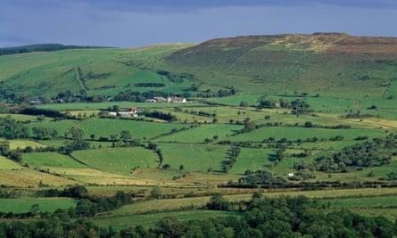 Farmland near Coleraine