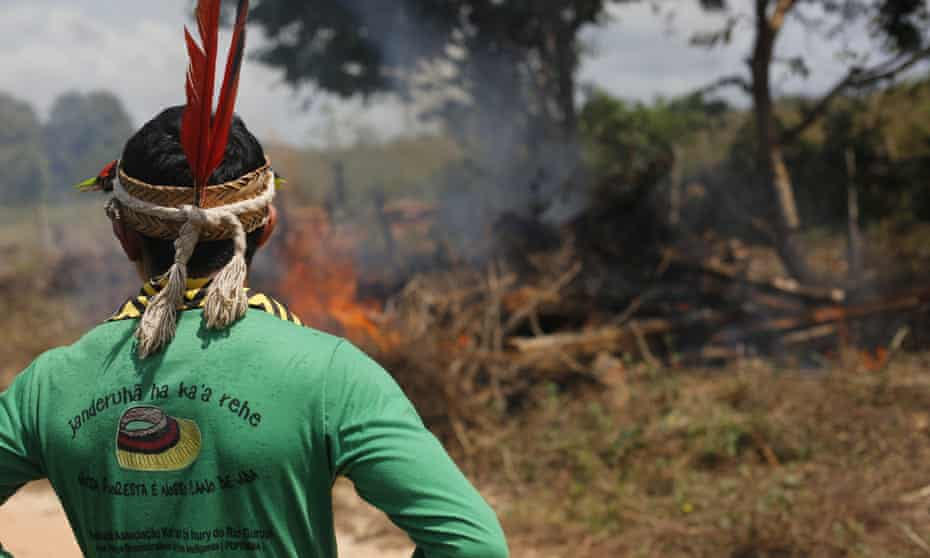 Ka'apor Indians set fire to illegally cut logs found near the indigenous territory.