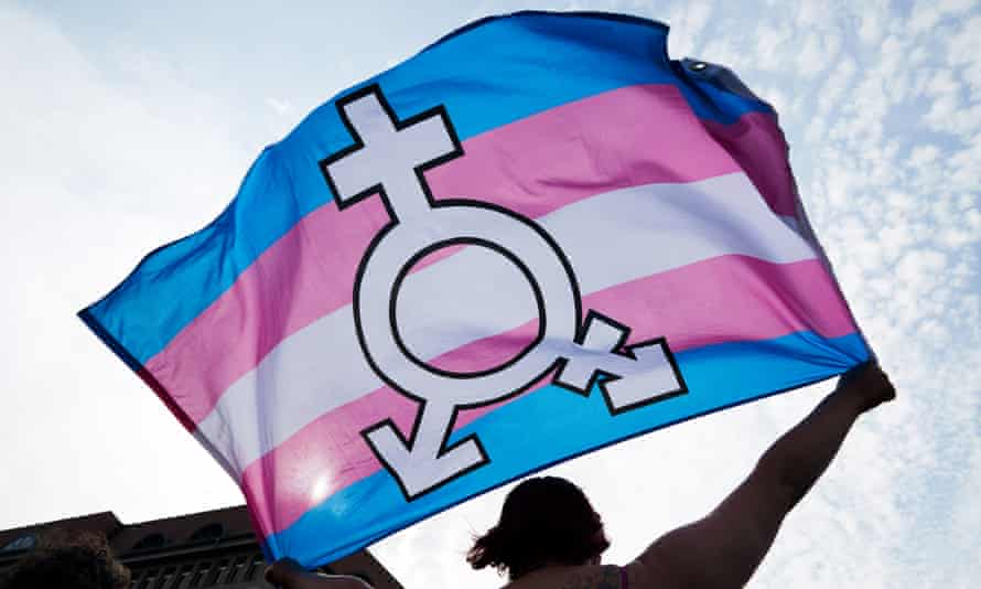A person holds up trans and gender diverse flag during a rally in support of homosexual and transexual rights on the International Day against Homophobia and Transphobia in Berlin, Germany, 17 May 2018.