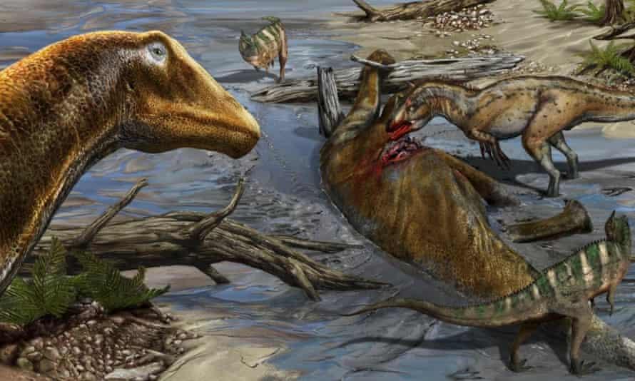 Life reconstruction of the new sauropod dinosaur Galeamopus pabsti