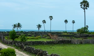 Barren landscape with a fences made of coral stone, which is a unique feature of Delft Island.