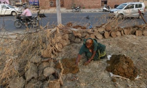 An Indian woman arranges animal dung, to be used as fuel, to dry on the outskirts of New Delhi