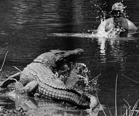 Alan Root surfacing next to a Nile crocodile in the Mzima spring, Tsavo West, Kenya.