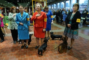 Women stand for the National Anthem with their Dachshunds (Smooth) during the Daytime Session in the Breed Judging across the Hound, Toy, Non-Sporting and Herding groups at the 143rd Annual Westminster Kennel Club Dog Show