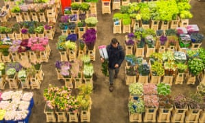 British producers have a growing presence at New Covent Garden Flower Market, but still most of the flowers sold there are imported.