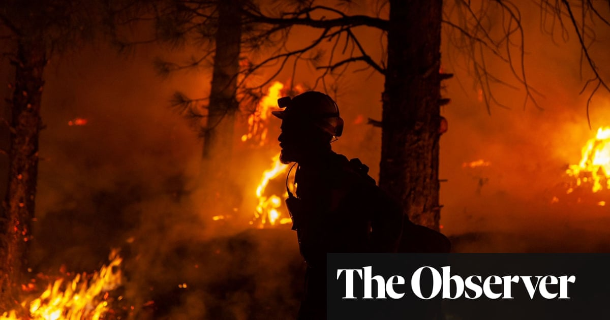 The Observer view on tackling climate change