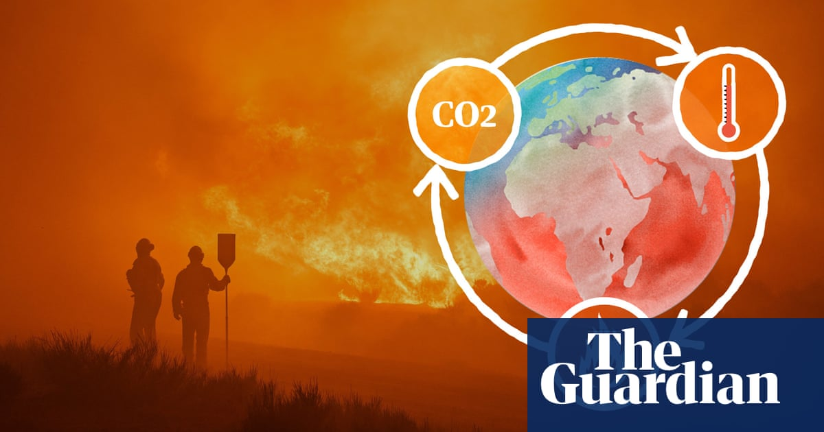 The climate science behind wildfires: why are they getting worse? – video explainer