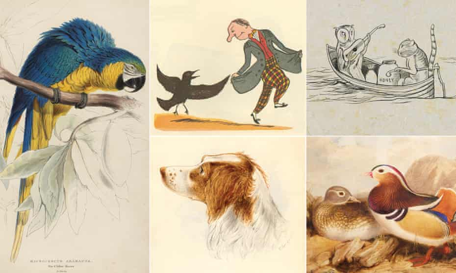 Composite image inclusing portraits of a dog and a parrot, as well as the Owl and the Pussycat in a rowing boat