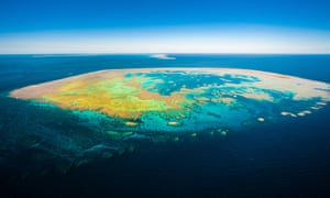 Bait Island in the Great Barrier Reef
