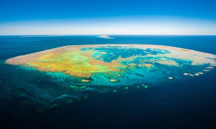 Bait Island on the Great Barrier Reef